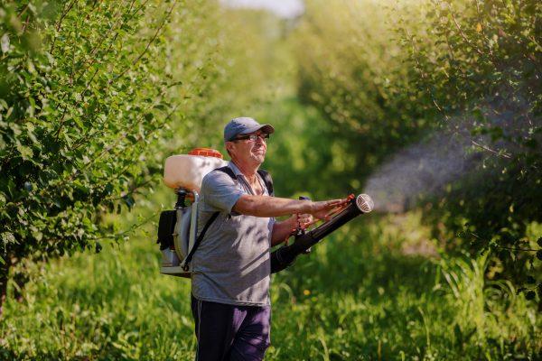 Les pesticides provoquent des cancers, des troubles cognitifs et des maladies respiratoires